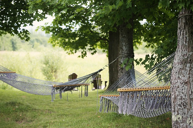 Easy care lawns give you more time to enjoy a hammock
