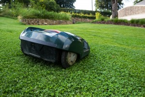 Lawn mower fun can be from a no-work involved robotic mower.