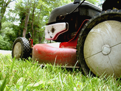lawnmower_new