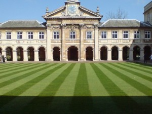 Cut and striped lawn.