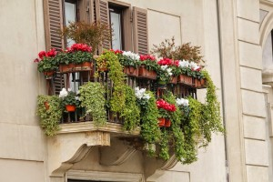 window boxes on a patio for a container garden