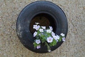 tire on a wall used as a planter